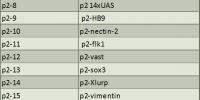 p2 Plasmids